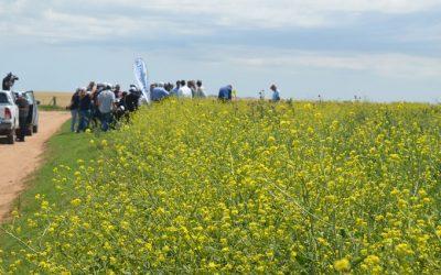 Syngenta presenta Paisajes Multifuncionales – agricultura que suma biodiversidad