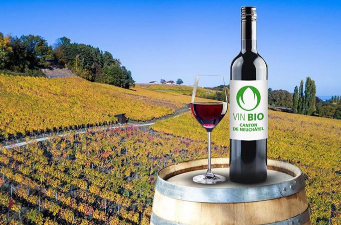 Neuchâtel lidera el vino bio suizo