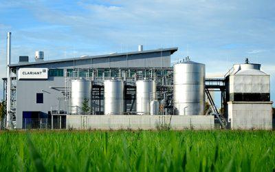 Clariant concluye con éxito las pruebas de miscanthus para cultivo energético