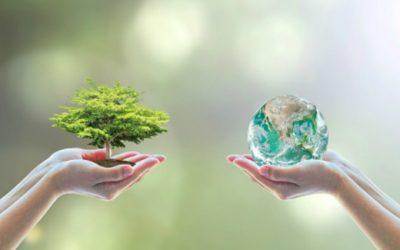 Givaudan eleva su compromiso para limitar el cambio climático