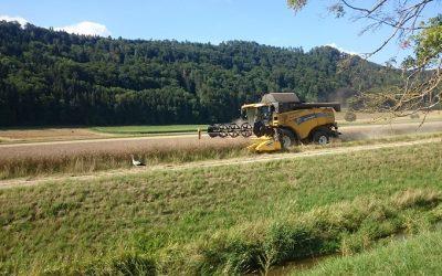 El valor agregado de la agricultura suiza continúa en alza