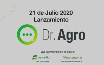 """SYNGENTA ARGENTINA LANZA """"DR. AGRO"""", SU CHATBOT ESPECIALISTA EN SEEDCARE"""
